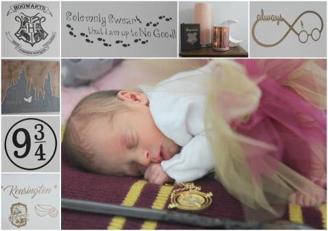 2018-02-18 - Kensington's Newborn Photos - HP [001]